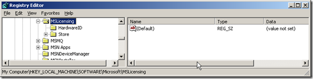 License_Error_regedit